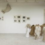 Vue d'exposition - Palais universitaire - 2012
