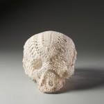 Crâne en dentelle - 2009